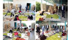 Başkan Turgut, Narenciye İşçileriyle Bir Araya Geldi