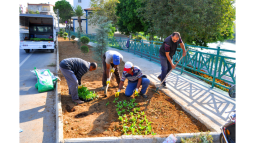 Silifke'de Parklar ve Bahçeler Rengarenk Oluyor