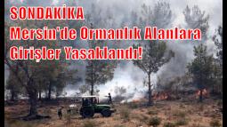 Mersin'de Ormanlık Alanlara Girişler Yasaklandı!